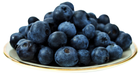 Blueberry in Plate PNG