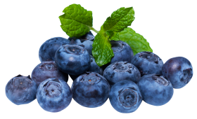 Blueberry with leaf PNG