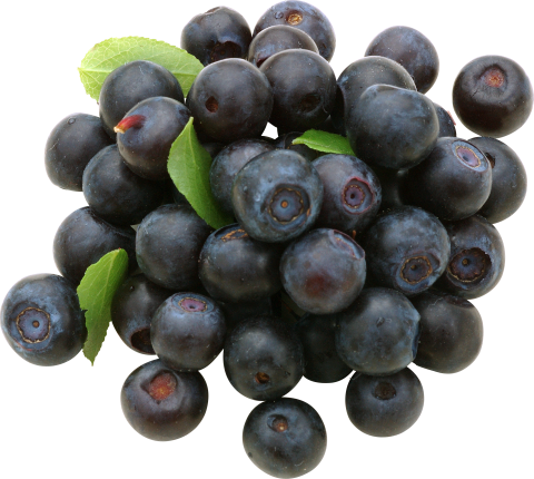 Blueberrys PNG