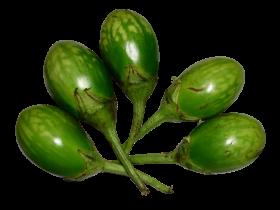 Brinjal Green PNG