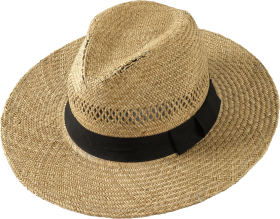 Brown Hat PNG