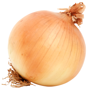 Brown Onion PNG