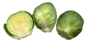 Brussels Sprouts PNG