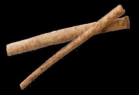 Burdock Root PNG