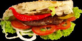 Burger Oriental PNG