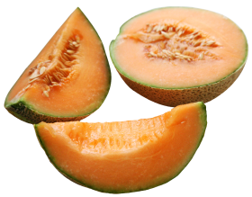Cantaloupe Slices PNG