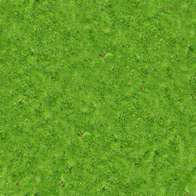 Carpet PNG