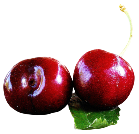 Cherries with leaf PNG