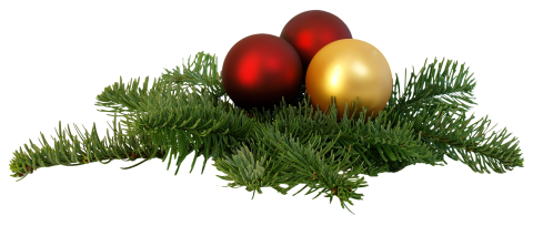 Christmas Branch PNG