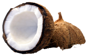 Coconut cut in half PNG