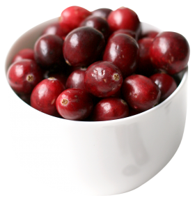 Cranberry in cup PNG