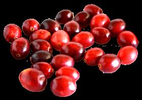 Cranberry PNG