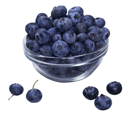 Cup of Blueberrys PNG