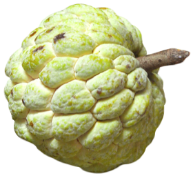 Custard Apple PNG