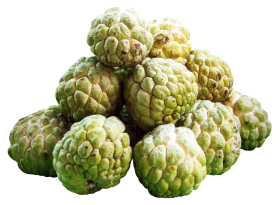 Custard Apples PNG