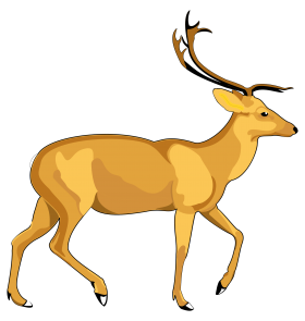 Deer Vector PNG
