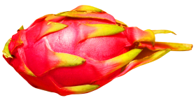 Dragon Fruit PNG