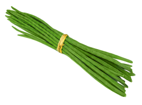 Drumstick PNG