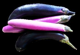 Eggplants PNG