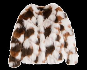 Felina Fur Coat PNG