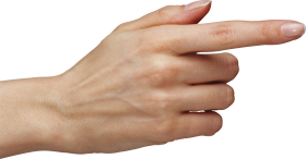 Fingers PNG