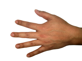 Five Finger Hand PNG