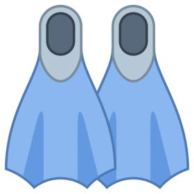 Flippers PNG