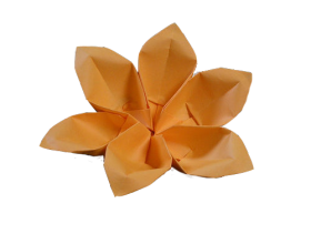 Flower Origami PNG