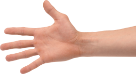 Four Finger Hand PNG