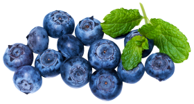Fresh Blueberries PNG