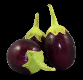 Fresh Brinjal PNG