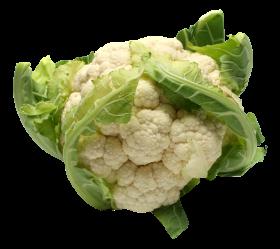 Fresh Cauliflower PNG