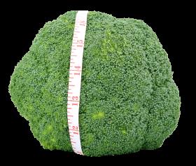 Fresh Green Broccoli PNG