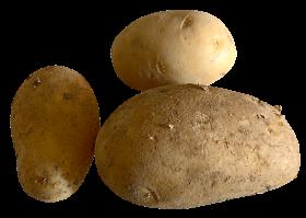 Fresh Potato PNG