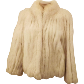 Fur Coat Brown PNG