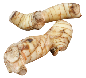 Galangal PNG