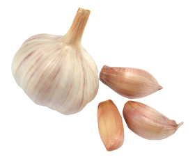 Garlic PNG