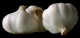 Garlics PNG