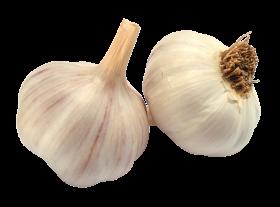 Garlic PNG
