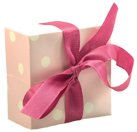 Tiny Gift Box with Big Bow PNG
