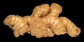 Ginger PNG