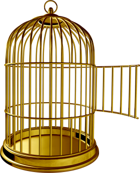 Golden Bird Cage PNG