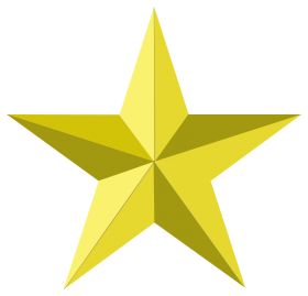 Decorative Christmas Star PNG