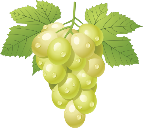 Grapes PNG