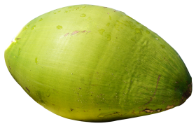 Green  Coconut PNG