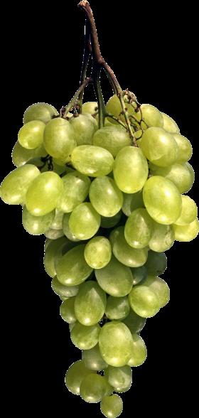 Green Grapes PNG