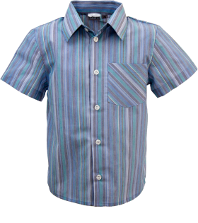 Half Strip Shirt PNG