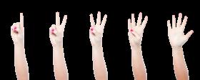 Hand Gestures PNG