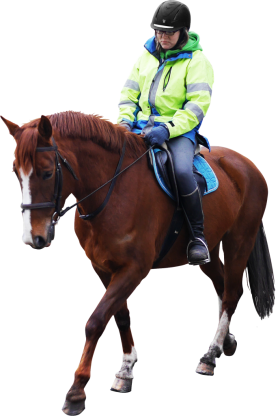 Horse Riding PNG