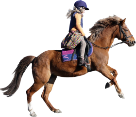 Horse PNG